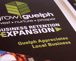 Grow Guelph Business Rentention + Expansion